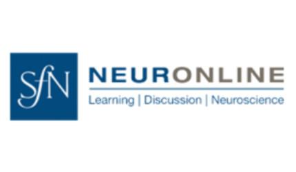 neuronline imagine