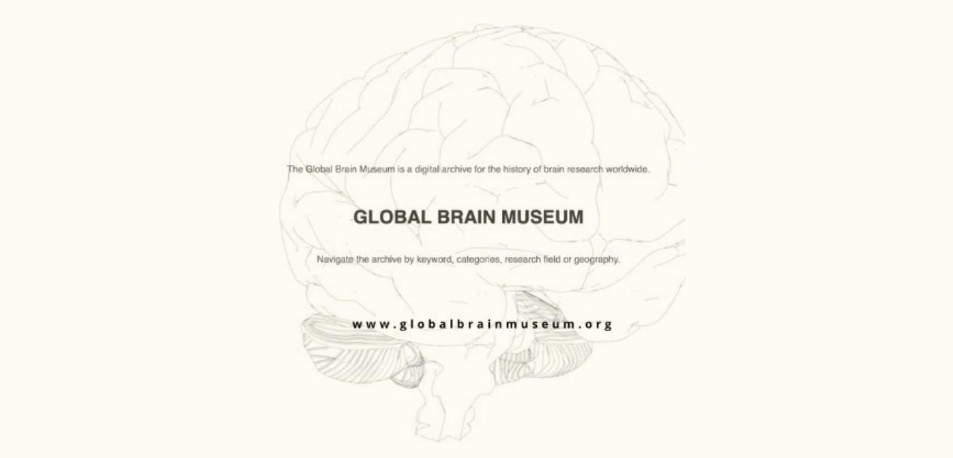 GBMwebpage